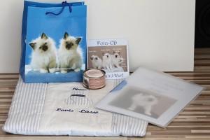 Kittenpaket