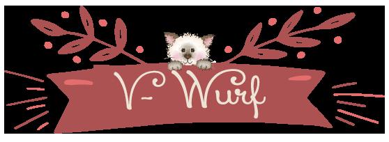 V-Wurf_Einzelseite